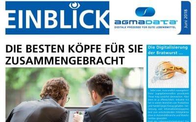 """Newsletter """"Einblick"""" erschienen"""